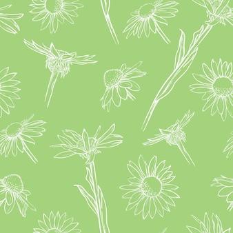 Hellgrünes nahtloses blumenmuster weiße gänseblümchen hand gezeichnete vektorillustration