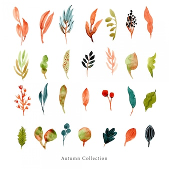 Herbst blätter und zweige aquarell sammlung