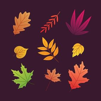 Herbst blätter vektorelement