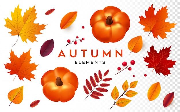Herbst element kollektion