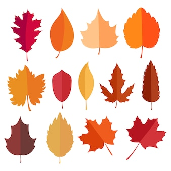 Herbst elemente sammlung