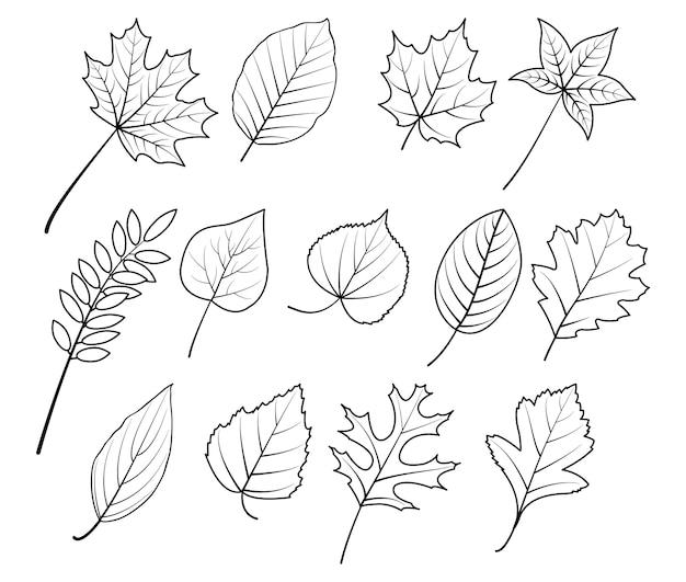 Herbst handzeichnung