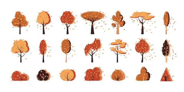 Herbst herbst goldbaum, busch flach cartoon icon set. waldpark anderer form, gartensymbol