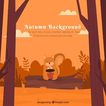 Herbst hintergrund mit eichhörnchen