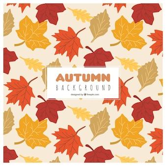 Herbst hintergrund mit gefallenen blätter