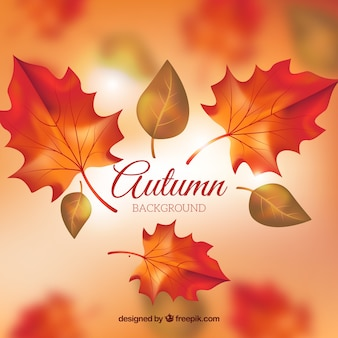Herbst Hintergrund mit realistischem Design