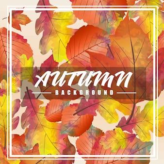 Herbst hintergrund vektor