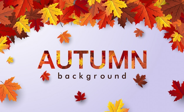 Herbst laub vektor verkauf banner, ahornblatt hintergrund