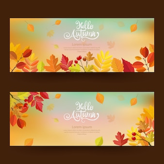Herbst mit schönen blättern.