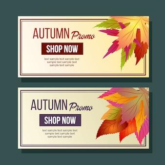 Herbst promo laubsaison blätter