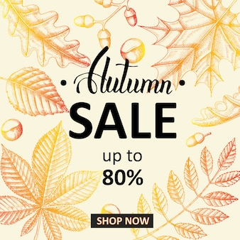 Herbst sale banner. beschriftung. skizzieren. hand gezeichnete gekritzelblätter. gravur abbildung. bis zu 80% jetzt einkaufen.