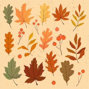 Herbst satz bunte blätter ahorn, eiche, eberesche. illustration