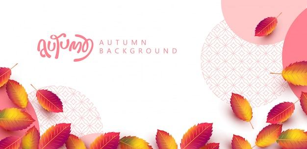 Herbst verlässt hintergrund. saisonale beschriftung. promotion sale banner der herbstsaison.