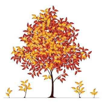 Herbstbaumillustration
