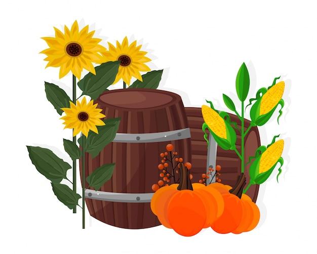 Herbsternte sonnenblume, mais, kürbis und barrel vektor-illustration