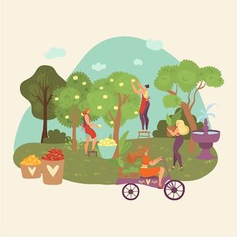 Herbstgarten, herbsternte-leute sammeln ernte von bäumen, landwirtschaft, die karikaturillustrationszusammensetzung bewirtschaftet.