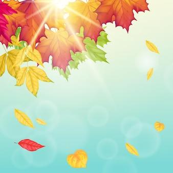 Herbsthintergrund mit blauem himmel des herbstfalls und heller sonne