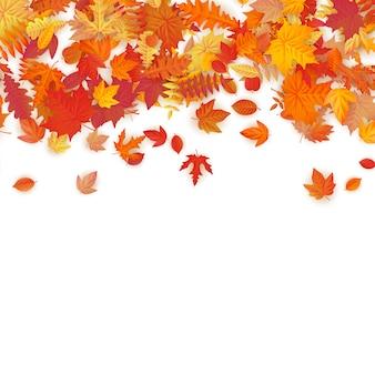 Herbsthintergrund mit goldenem ahorn, eiche und anderen blättern.