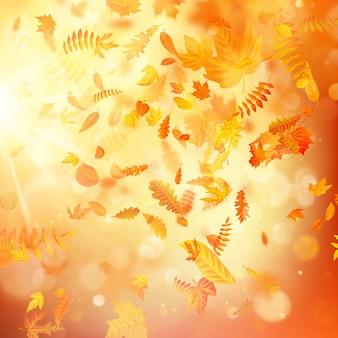 Herbsthintergrund mit natürlichen blättern und hellem sonnenlicht.