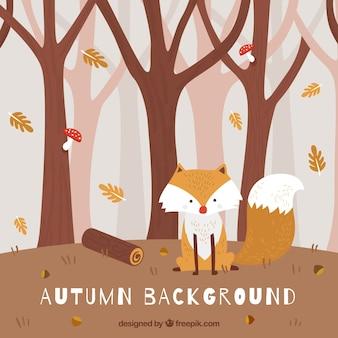 Herbsthintergrund mit nettem fuchs im wald