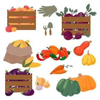 Herbstkollektion von elementen für ihr design mit kürbissen, blättern, gemüse, mais, rüben, karotten und äpfeln. herbsterntekonzept. illustration.