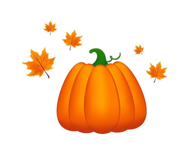 Herbstkürbis und blätter