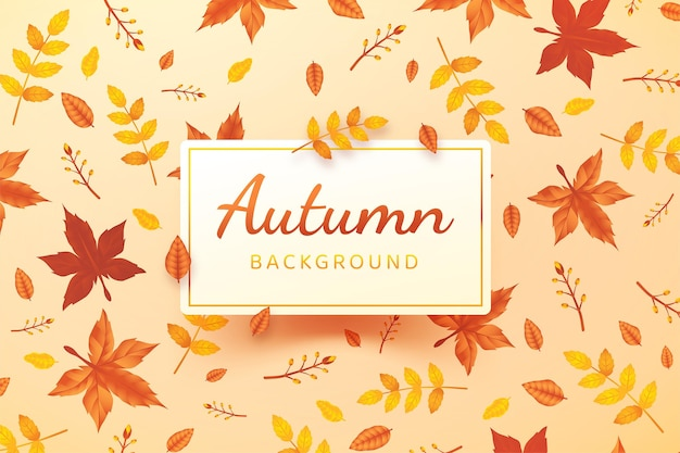 Herbstlaub hintergrund mit farbverlauf