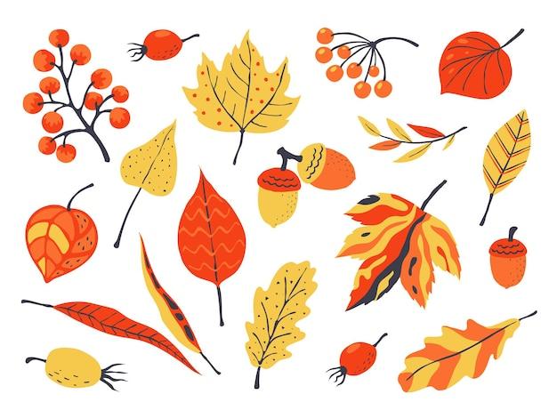 Herbstlaubillustration