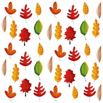 Herbstlaubmusterhintergrund lokalisiert. vektor-illustration