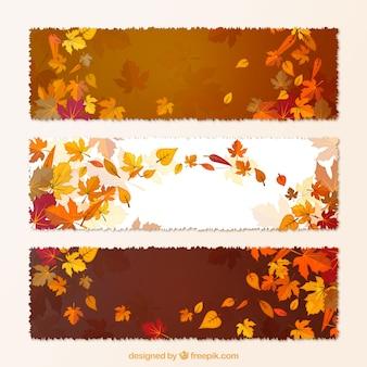Herbstliche fahnen