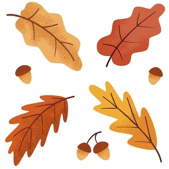 Herbstliches botanisches eichenset, blätter und eichel