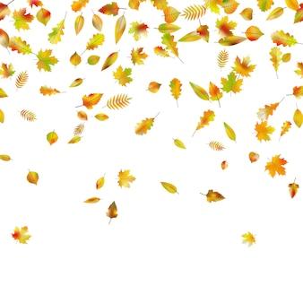 Herbstliches herbstlaub.