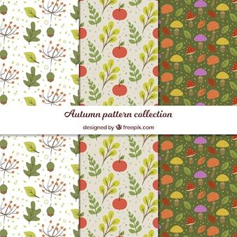 Herbstmuster-sammlung mit flachen blättern