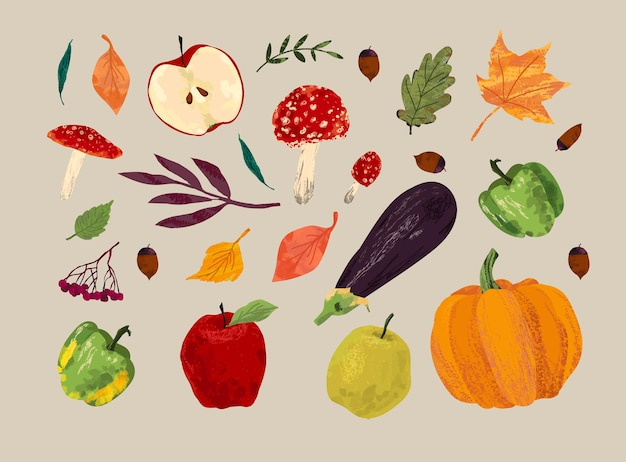 Herbstset. ernte, pilze, auberginen, pfeffer, apfel, kürbis, helle blätter, eberesche, eicheln.