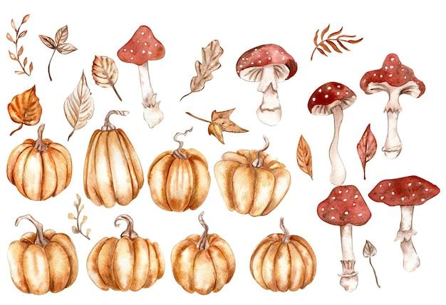 Herbstset mit kürbissen und pilzen