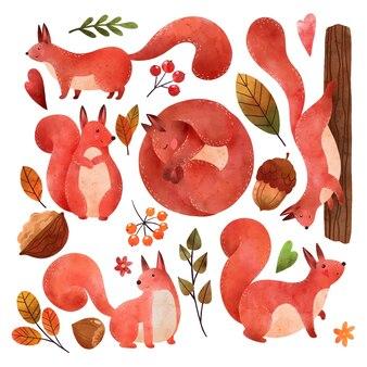 Herbststimmung waldeichhörnchen handgezeichneter vektor