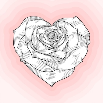 Herzförmige rose, monochrome sketch