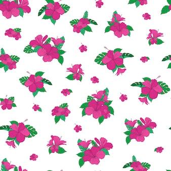 Hibiscus tropische blume