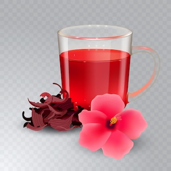 Hibiskus-tee in einem glasbecher und in der blume auf einem transparenten hintergrund. trockener roselle tee. realistische illustration.