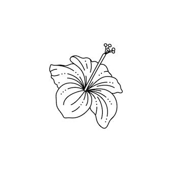 Hibiskusblüte im trendigen minimalistischen liner-stil. tropische blumenvektorillustration zum drucken auf t-shirts, webdesign, schönheitssalons, postern, erstellen eines logos und andere