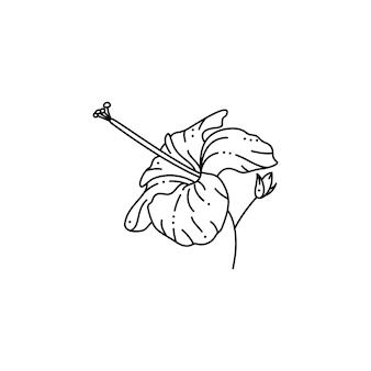 Hibiskusblüte im trendigen minimalistischen liner-stil. vector tropical flower illustration zum drucken auf t-shirts, webdesign, schönheitssalons, postern, erstellen eines logos und musters