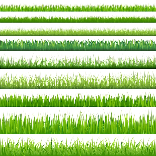 Hintergründe des grünen grases, auf weißem hintergrund, illustration