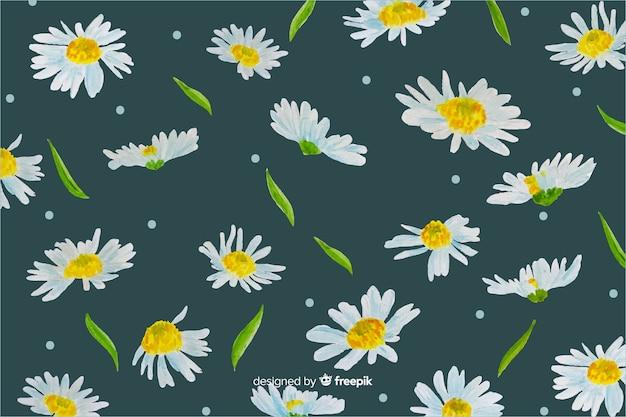 Hintergrund-aquarelldesign der gänseblümchen dekoratives