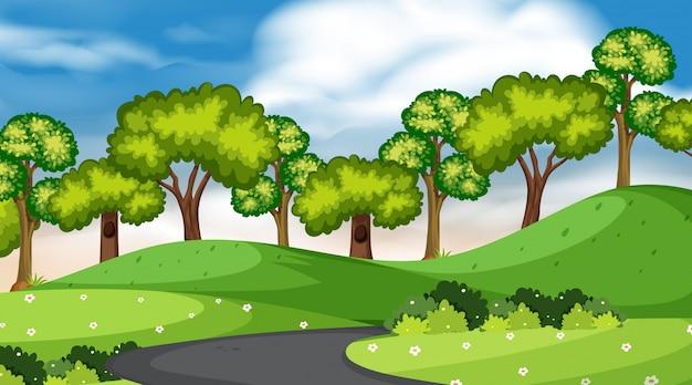 Hintergrund der landschaft mit bäumen und straße im park