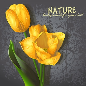 Hintergrund für ihren text mit gelben tulpen