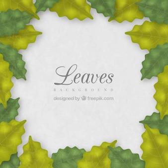 Hintergrund mit einem grünen blättern rahmen