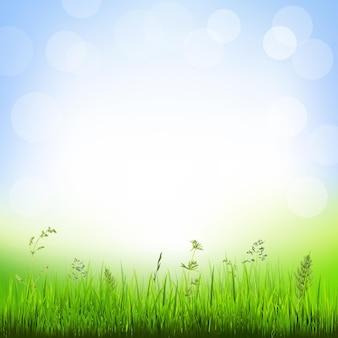 Hintergrund mit grasrand, mit farbverlaufsnetz