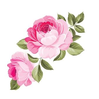 Hintergrund mit rosen.