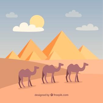 Hintergrund von ägypten-pyramiden gestalten mit wohnwagen von kamelen landschaftlich