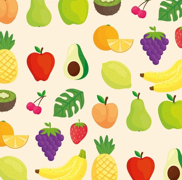 Hintergrund von früchten, avocado und tropischen blättern